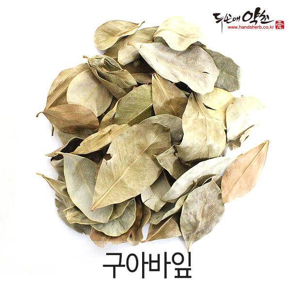 구아바잎 100g